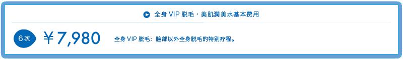 全身VIP・美肌水基本费用